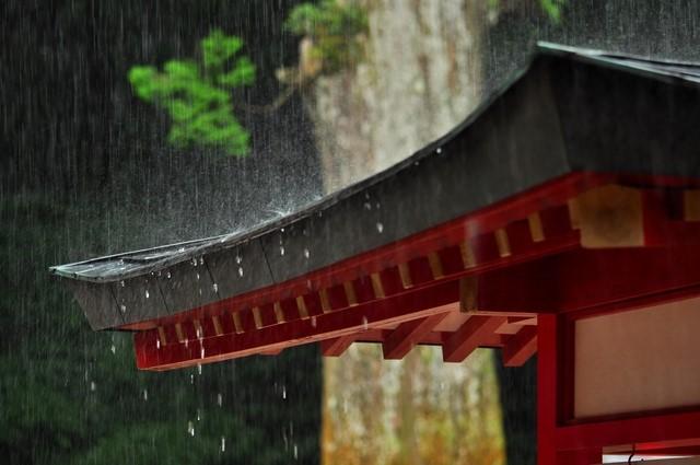 雨を受ける屋根